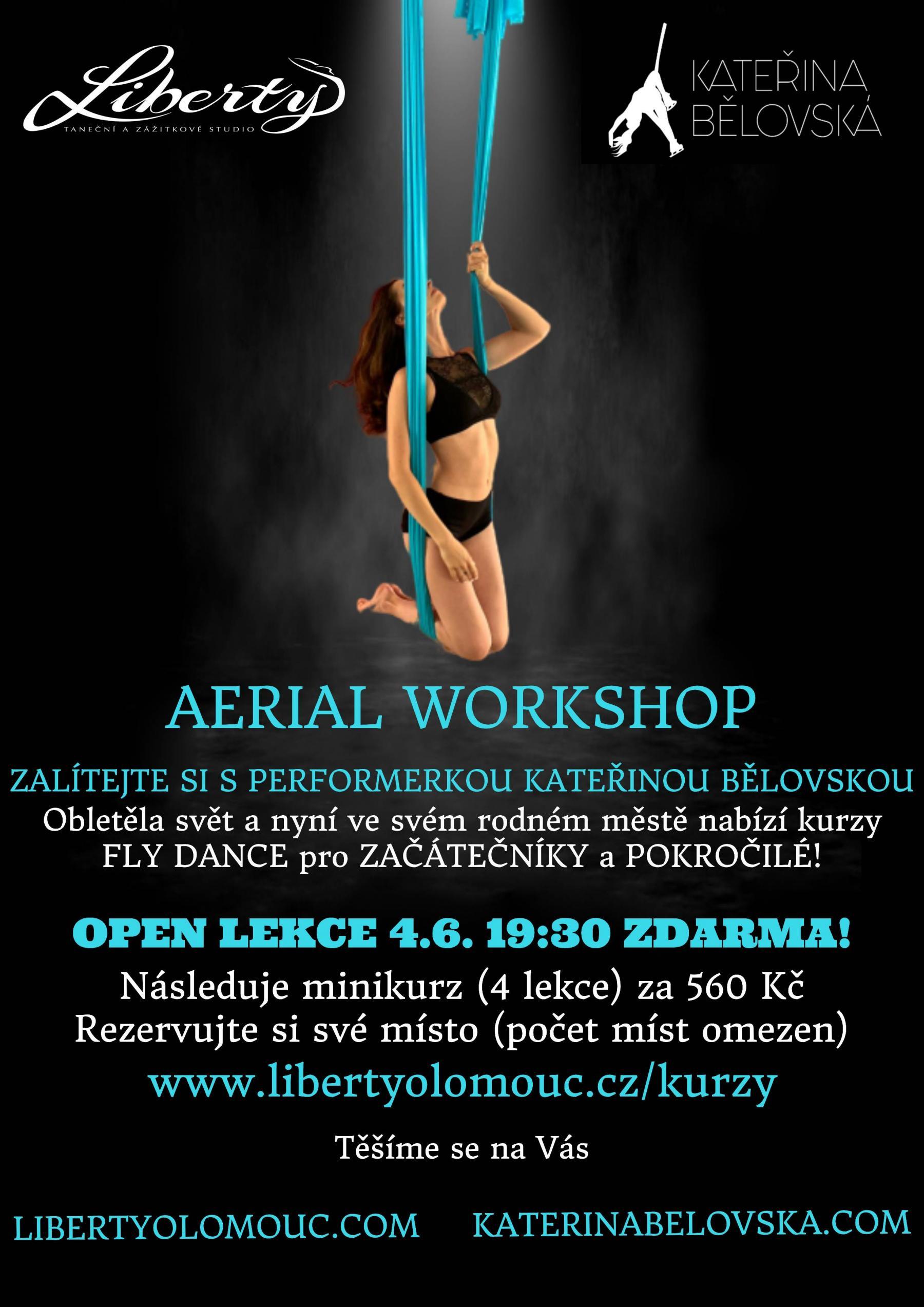 aerial workshop